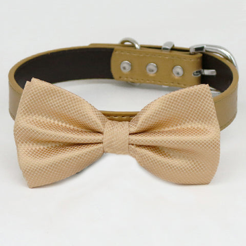 Champagne bow tie collar XS to XXL collar and bow tie, adjustable, Puppy bow tie, handmade, dog of honor ring bearer, Champagne dog collar , Wedding dog collar