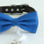 Royal blue bow tie collar, handmade Puppy bow tie, XS to XXL collar and bow adjustable dog of honor ring bearer, Burgundy blush bow tie