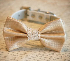 Cream Wedding dog Collar, Cream wedding accessory, Collar of 2015, Dog Bow tie, Dog lovers, bow with Lace - LA Dog Store  - 1