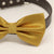 Gold bow tie attached to leather dog collar, Chic Dog Bow tie, Pet Wedding Accessories , Wedding dog collar