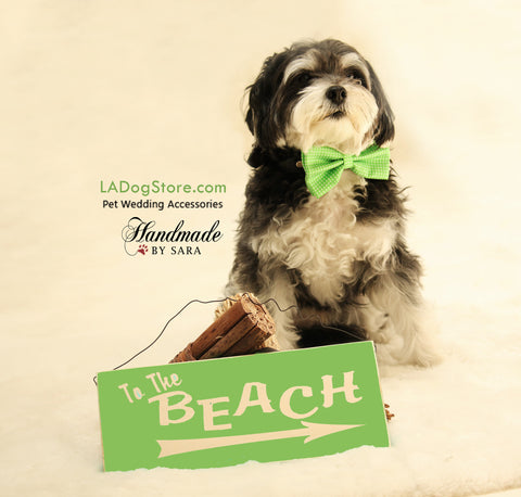 Green Dog Bow tie attached to collar, Dog birthday gift, Pet wedding accessory