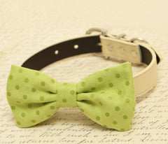 Green dog bow tie, Bow attached to dog collar, Pet wedding accessory, dog birthday gift, Green wedding, Spring wedding,Polka dots,dog collar - LA Dog Store  - 1