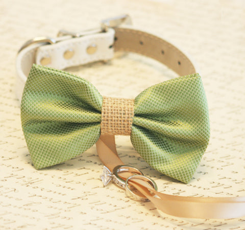 Green and burlap Dog Bow Tie ring bearer collar, Burlap Wedding
