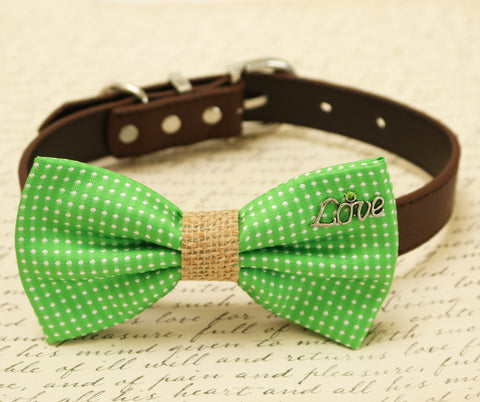 Green Dog Bow Tie attached to collar, Country Rustic, charm, Burlap bow tie, gift