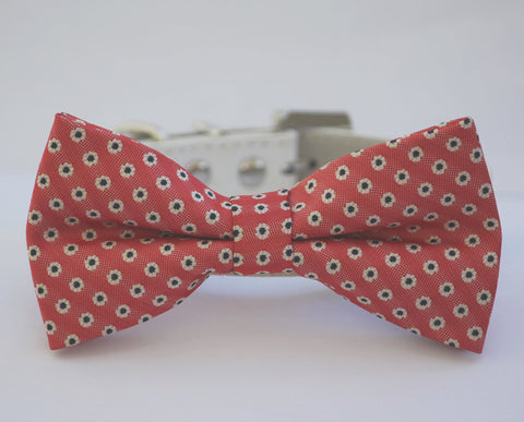 Coral Dog bow tie, Pet Lovers, Coral dog wedding, Dog Birthday, Coral wedding , Wedding dog collar