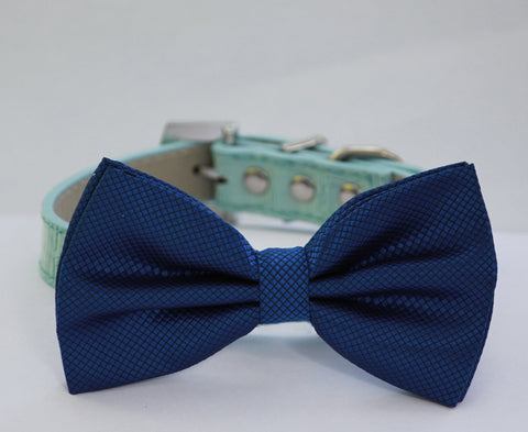 Royal Blue dog Bow tie attached to Blue Collar, Pet wedding accessory, Some thing Blue, Ocean
