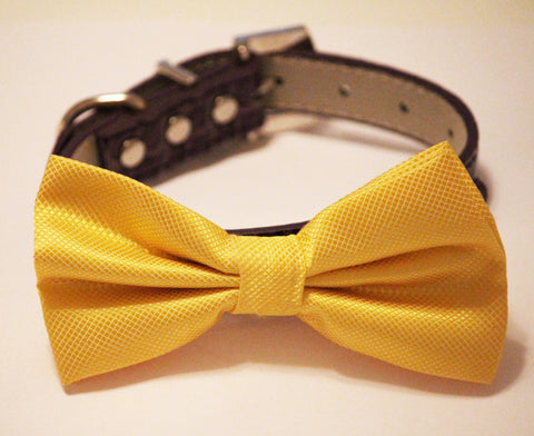 Yellow Dog Bow Tie  with high quality purple leather, , Purple Yellow Wedding accessories