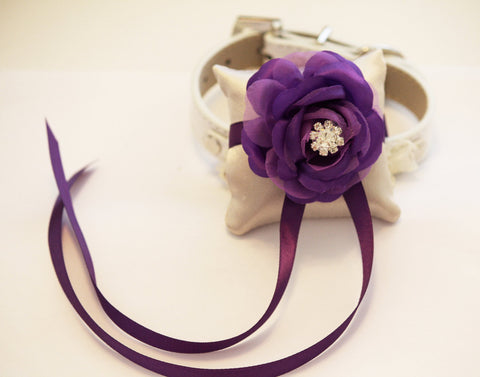 Purple Ring Pillow Collar, Pet wedding accessory, Purple unique wedding ideas , Wedding dog collar