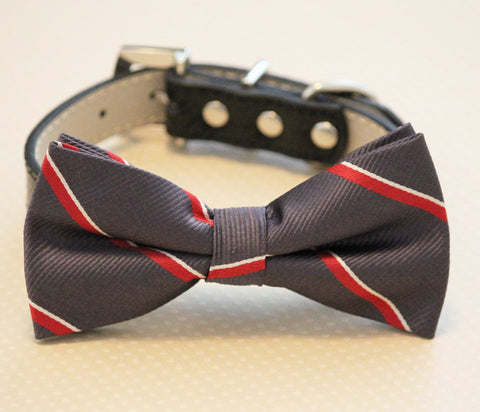 Dark Gray dog bow tie with high quality black leather collar, , Chic Dog Bow tie, Wedding Dog Collar