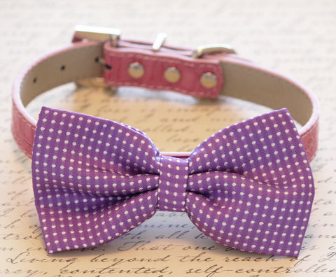 Purple Dog Bow Tie collar