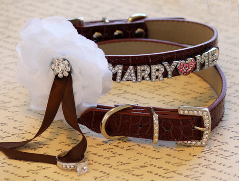 MARRY ME, Dog Collar, Brown Leather dog Collar with Marry me letters and white Flower ,Proposal Idea , Wedding dog collar