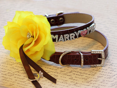 MARRY ME, Dog Collar, Brown Leather dog Collar with Marry me letters and Yellow Flower ,Proposal Idea
