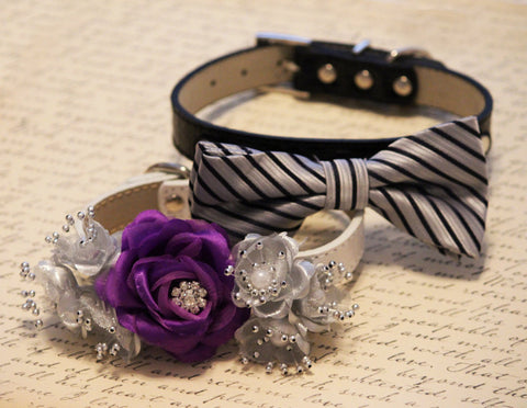 Black Silver Purple wedding Dog two Collars, floral collar and dog bow tie
