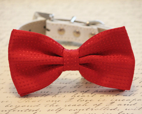 Red Dog Bow tie collar, Cute chic, Wedding gift, polka dots