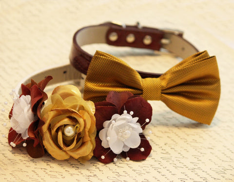 Gold and Brown Dog 2 Collars, Floral and Bow tie, Pets Wedding accessory, Elegantly
