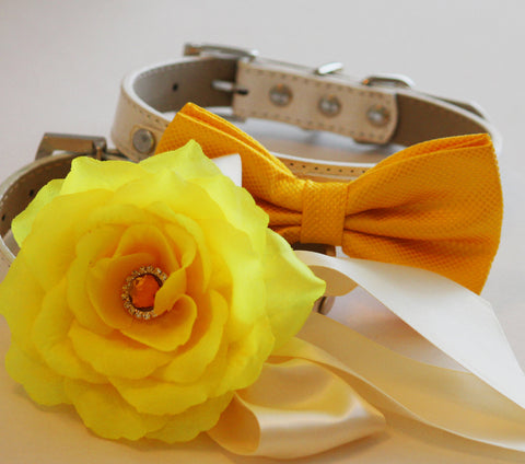 Yellow Orange wedding dog collars, 2 dog collars,  Floral dog Collar and bow tie- Yellow flower and Rhinestone, Wedding dog accessory