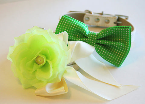 Green Wedding 2 dog collars, Green Floral Collar and Green Polka Dots Bow tie