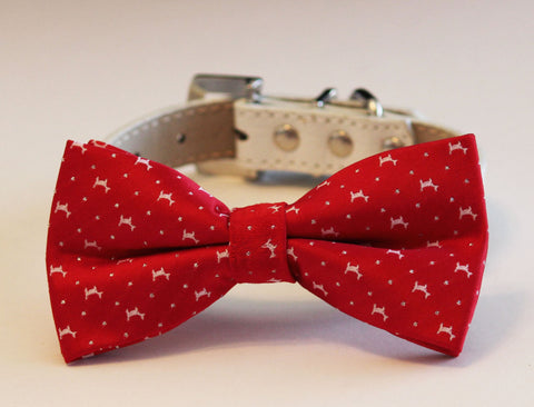 Red dog bow tie collar