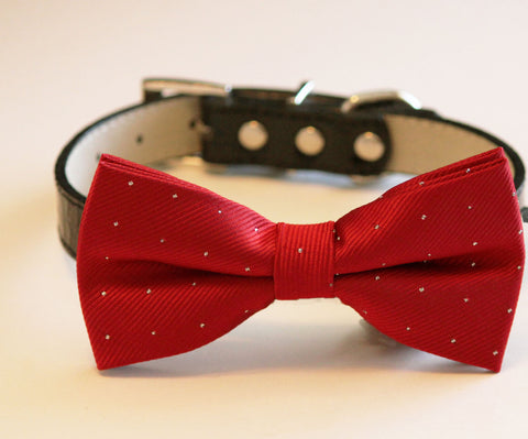 Red Ruby Dog Bow Tie with collar, Wedding dog bow tie, Ruby wedding ideas