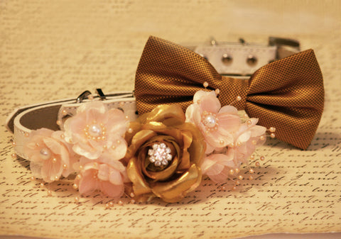 Gold and peach Dog Collars, floral collar and dog bow tie collar , Wedding dog collar
