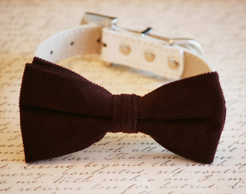 Chocolate Brown bow tie attached to dog collar, Chic Bow tie, Pet Wedding