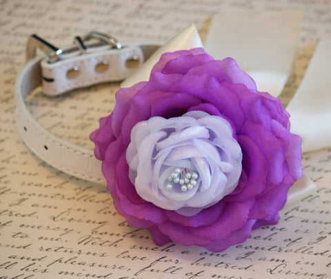 Purple and Lilac Floral Dog Collar, Purple, Lilac and Ivory wedding, Pet wedding accessories, Dog Lovers, Purple and Lilac Wedding