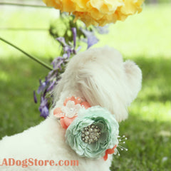 Peach and Mint Floral Dog Collar, Pet Wedding Accessory, Spring wedding, Floral dog Collar, Peach and Mint Wedding idea, Dog Lovers - LA Dog Store  - 1