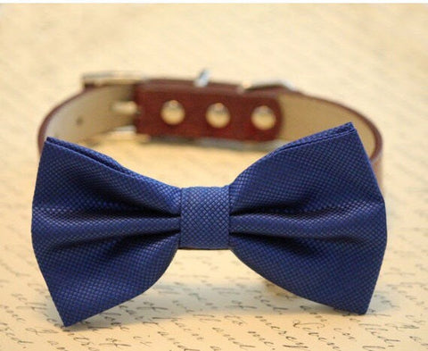 Royal Blue dog bow tie high quality leather and fabric, Blue Wedding pet collar