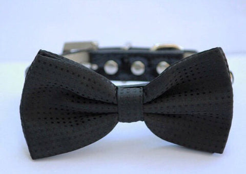 Black Dog Bow tie with collar, dog wedding, birthday pet accessory