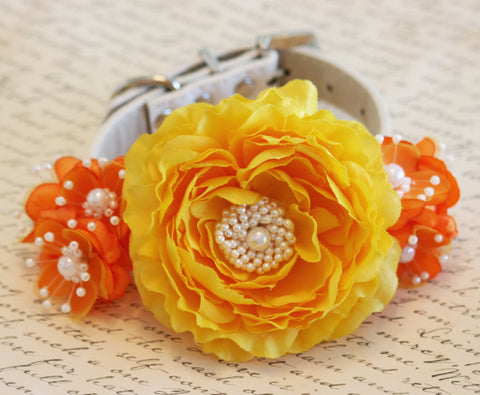 Tangerine and Yellow wedding Floral Dog Collar, Pet accessory , Wedding dog collar