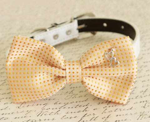 Cream Dog Bow tie collar, pet wedding accessory