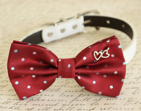 Red Bow tie attached to dog collar, heart, Dog birthday, wedding , Wedding dog collar