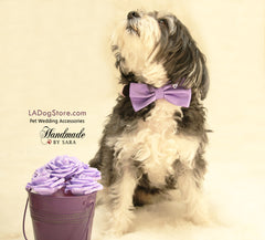 Lavender dog bow tie, Bow tie attached to dog collar, Purple wedding accessory, Dog birthday gift, dog collar, Lavendr,Wedding, Charm, Heart - LA Dog Store  - 1