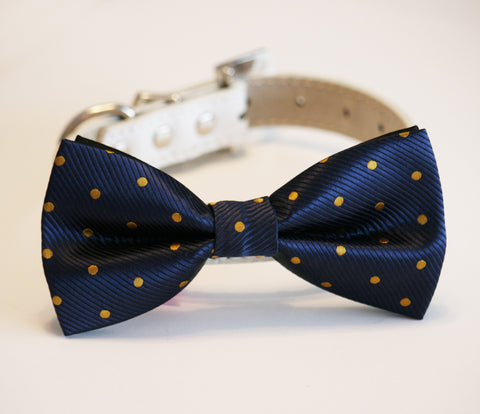 Navy and Gold Polka dots dog bow tie wedding, Dog Lovers, Dog birthday gift , Wedding dog collar