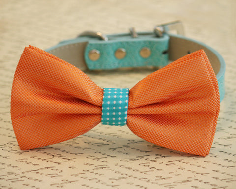 Exotic Orange and Sky Blue Dog Bow Tie collar, Beach Wedding, Pet Summer Accessory
