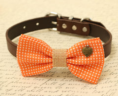 Orange Dog Bow Tie, Bow attached to brown dog collar, Pet wedding accessory, Charm, Sister always, dog lovers, Country Rustic wedding - LA Dog Store  - 1