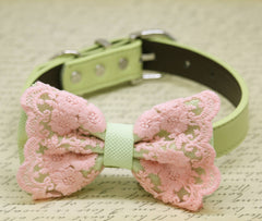 Pistachio Pink Lace Dog Bow Tie collar, Pistachio Wedding, Lace wedding