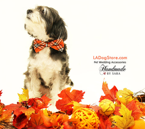 Plaid orange dog bow tie collar, dog lovers, pet accessory