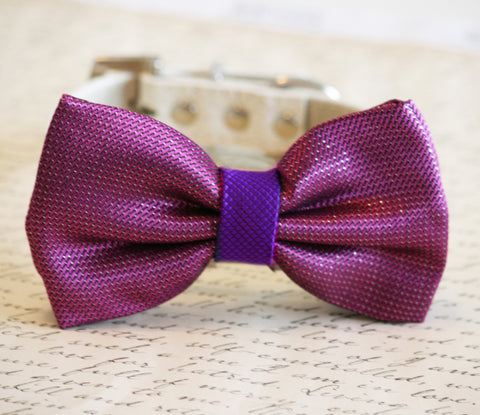Sangria and Purple Wedding Dog Collar, Sangria wedding, Sangria Dog Bow tie