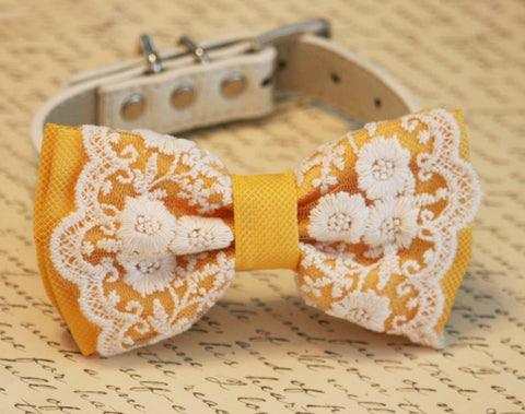 Yellow Dog Bow Tie, Spring Wedding, Pet wedding, boho wedding ideas