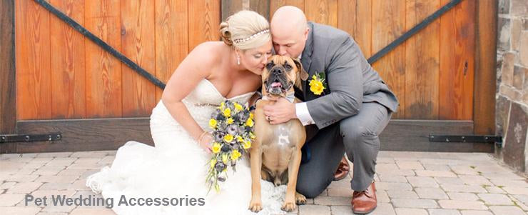 Pet wedding accessory