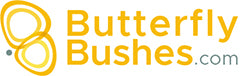 ButterflyBushes.com