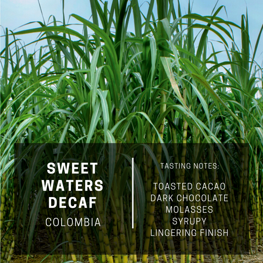Colombia Sweet Waters Decaf (Subscription)