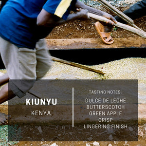 Kenya Kiunyu AA (Subscription)