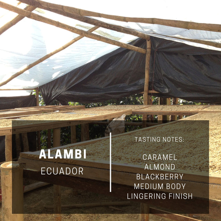 Ecuador Alambi (Subscription)