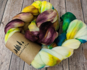Calypso space dye - superwash targhee sock fiber