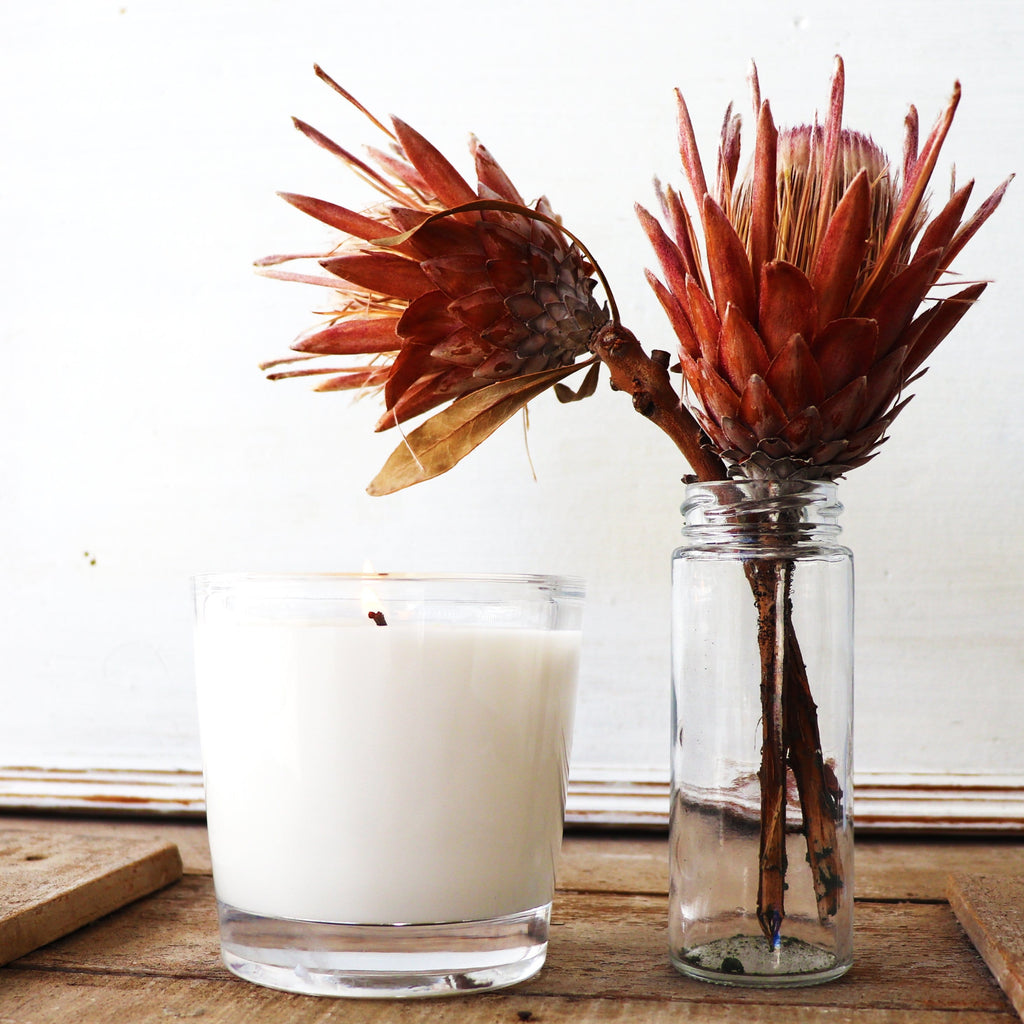 French Chai Candle in a clear thick glass with a dried Australian Flower from the Candle Kitchen