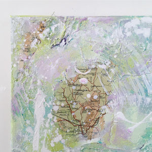 Coppice abstract painting Contour series