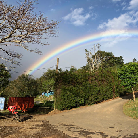 Rainbow set as arriving Finca Licho