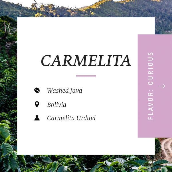 Carmelita Washed Java, Bolivia